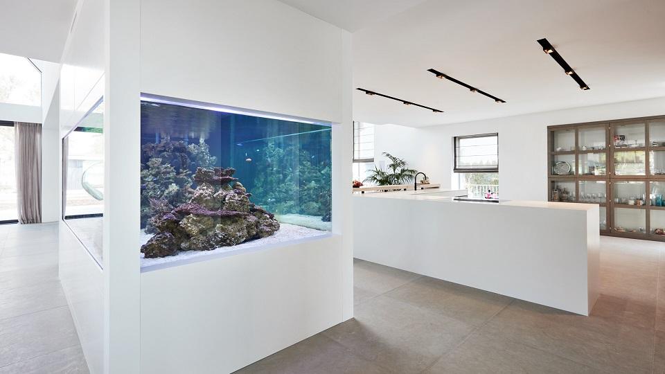 HI-MACS Aquarium-ombouw en Kookeiland
